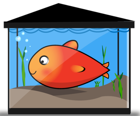 Gold tank. Free vector fish tanks