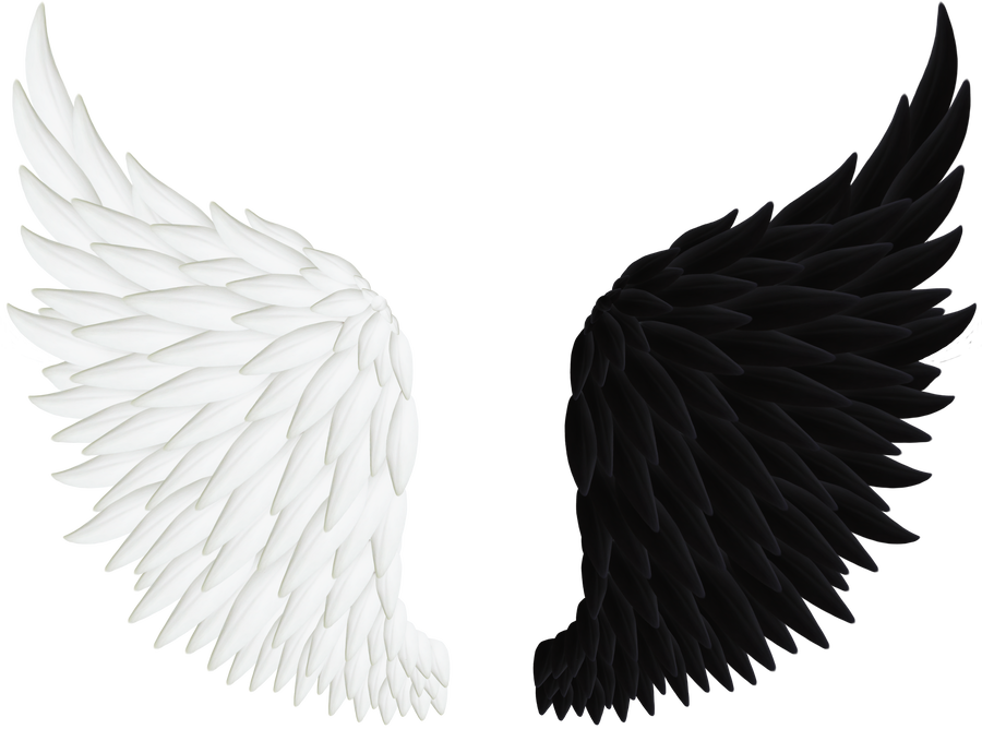 Angels floatin art png. Angel wings by thy