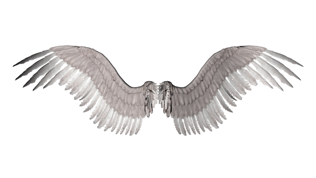 Gold angel wings png. Free download clip art
