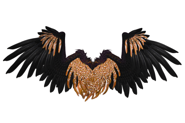 Gold angel wings png. Free photo d black