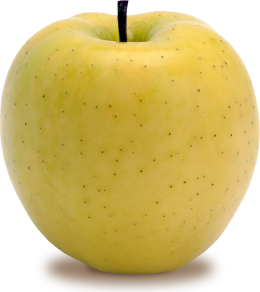 Golden apples png. And five senses lessons