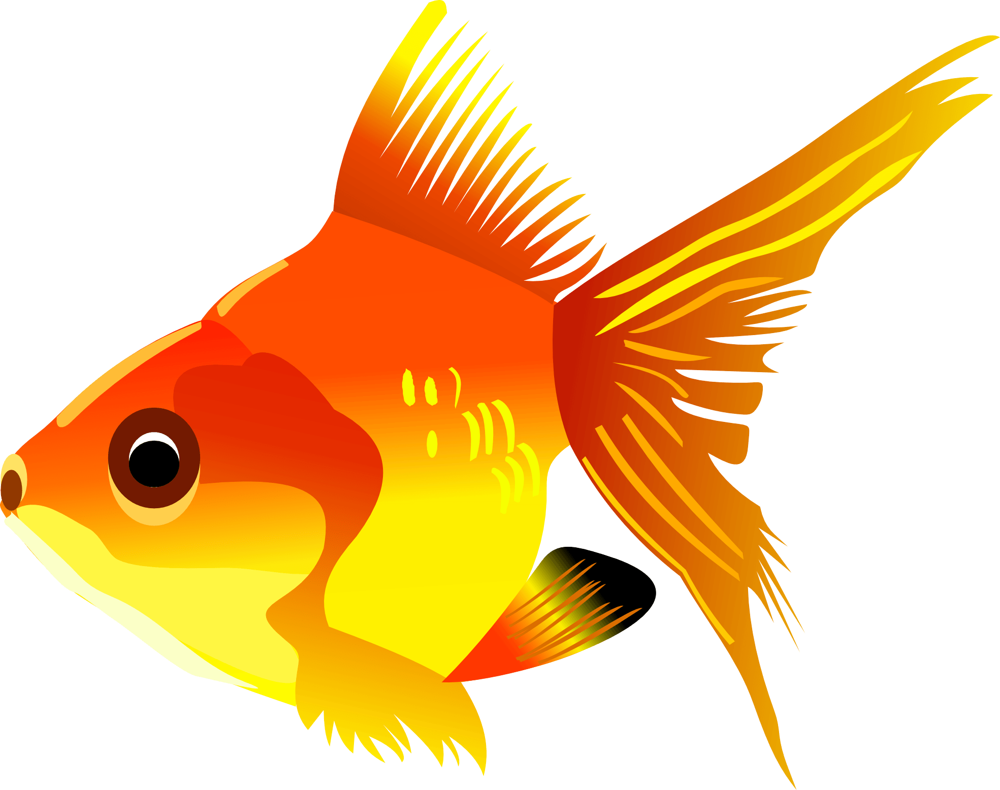 Golden fish. Png transparent clipart image