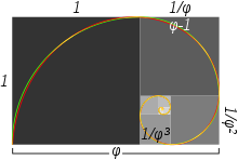 Fibonacci drawing graphic design. Golden spiral wikipedia approximate