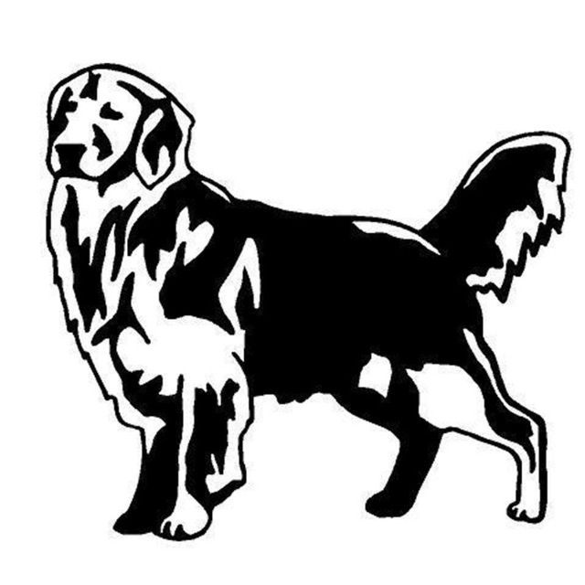 Golden clipart black and white. Cm retriever dog