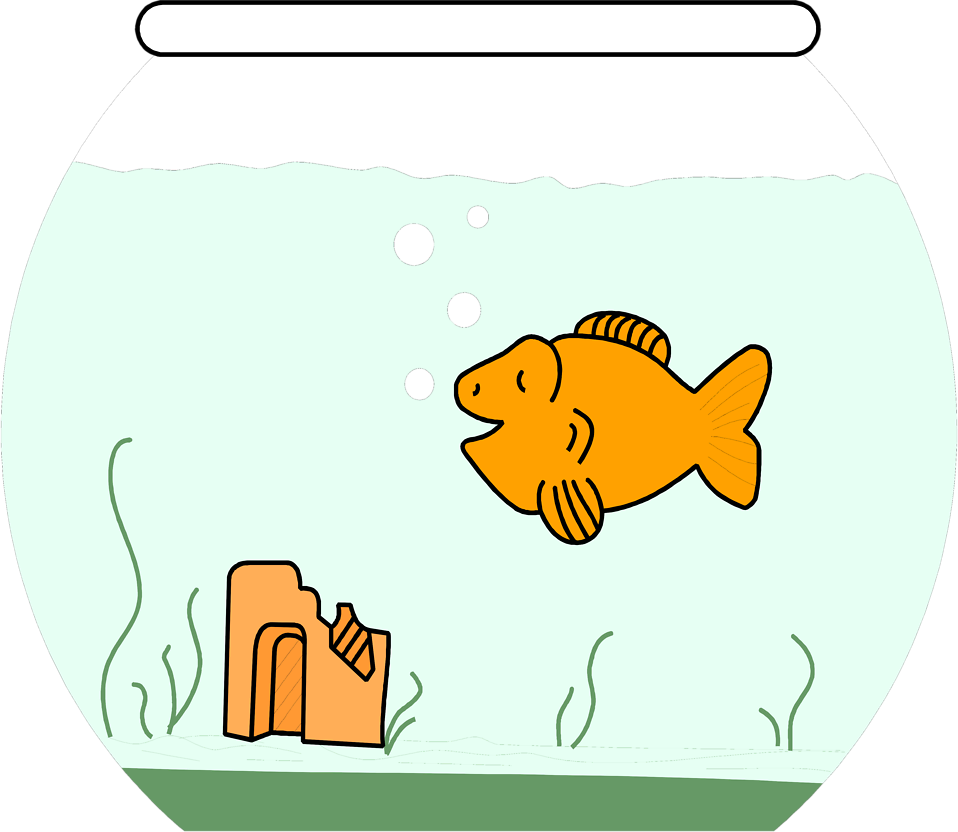 Goldfish in a bowl png. Free stock photo illustration