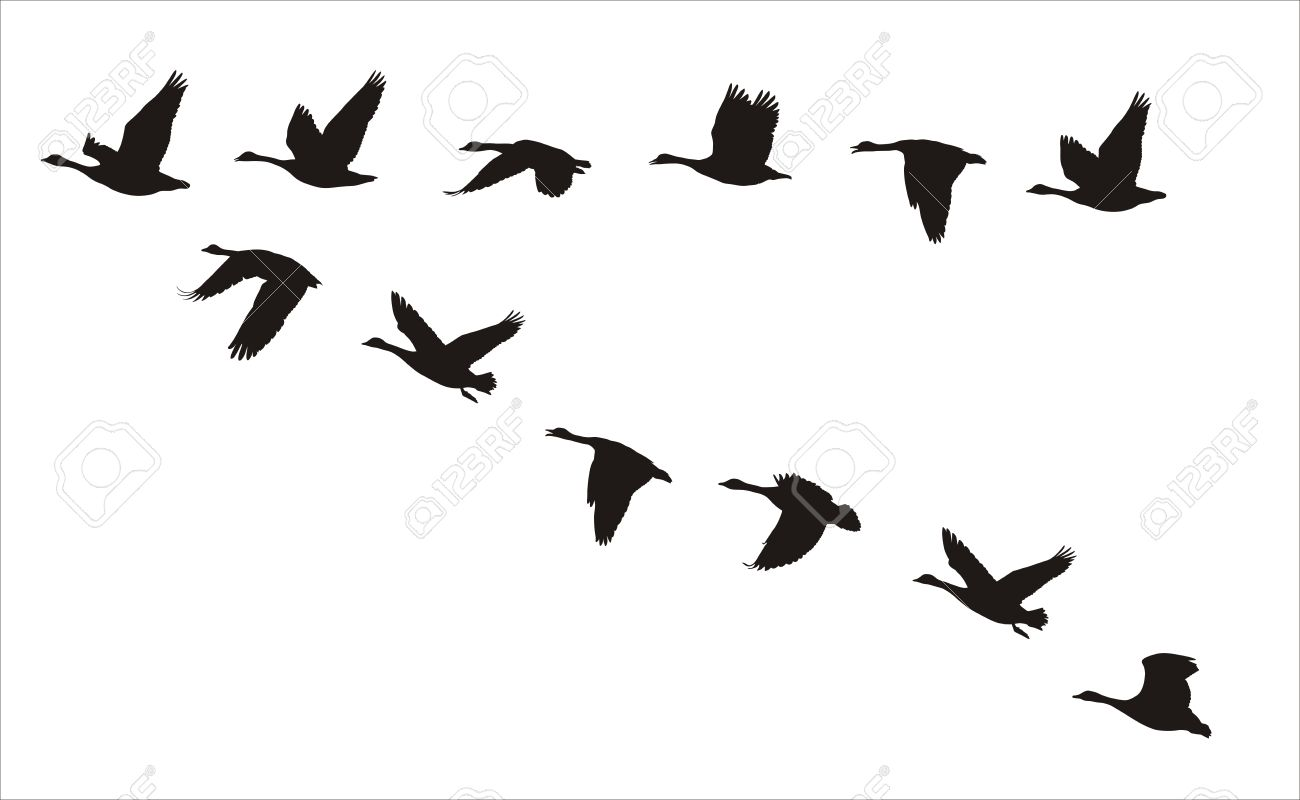 Goose clipart decal. Silhouette at getdrawings com