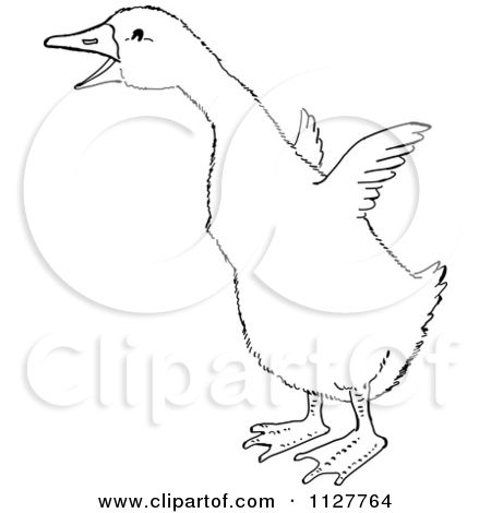 Goose clipart drawing. Royalty free rf illustrations