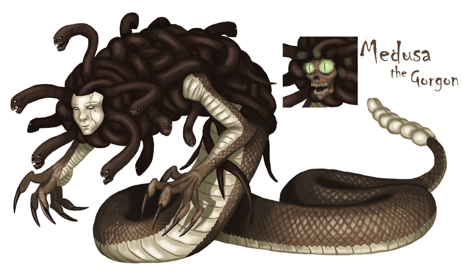 Gorgon drawing greek monster. What do you guys