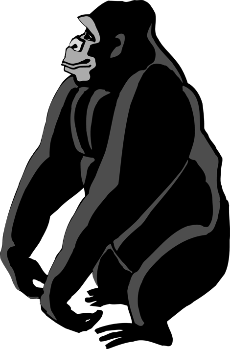 Gorilla clipart png. Collection of high