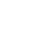 Gorilla face png. Images in collection page