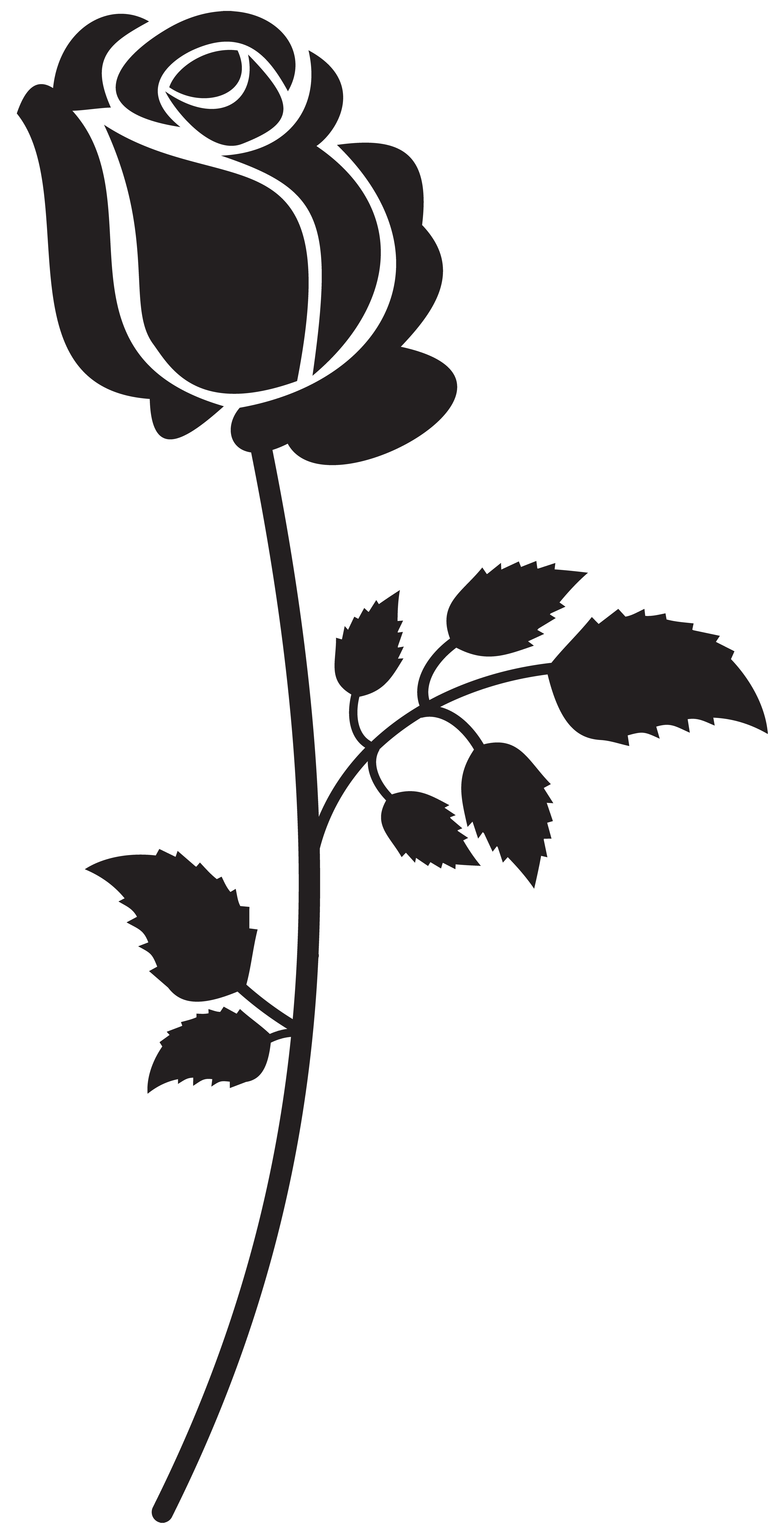 Svg silhouette rose. Png clip art image