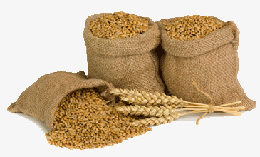 Three sacks of products. Cereal clipart wheat seed image transparent
