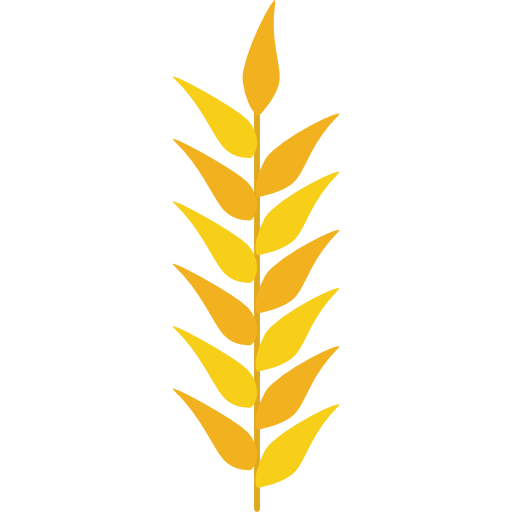 Wheat clipart wheat stem. Grains plant grain nature