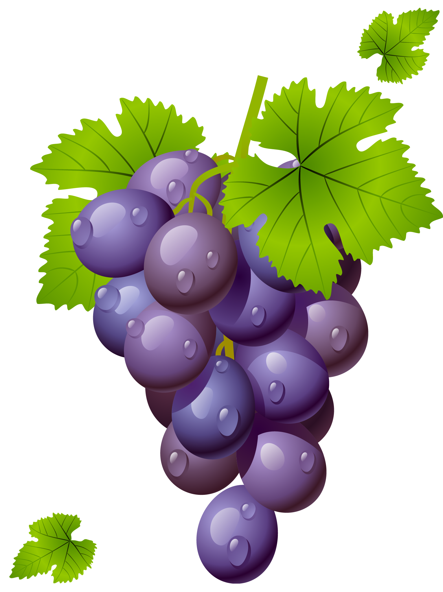 Grape clipart. With leaves png picture