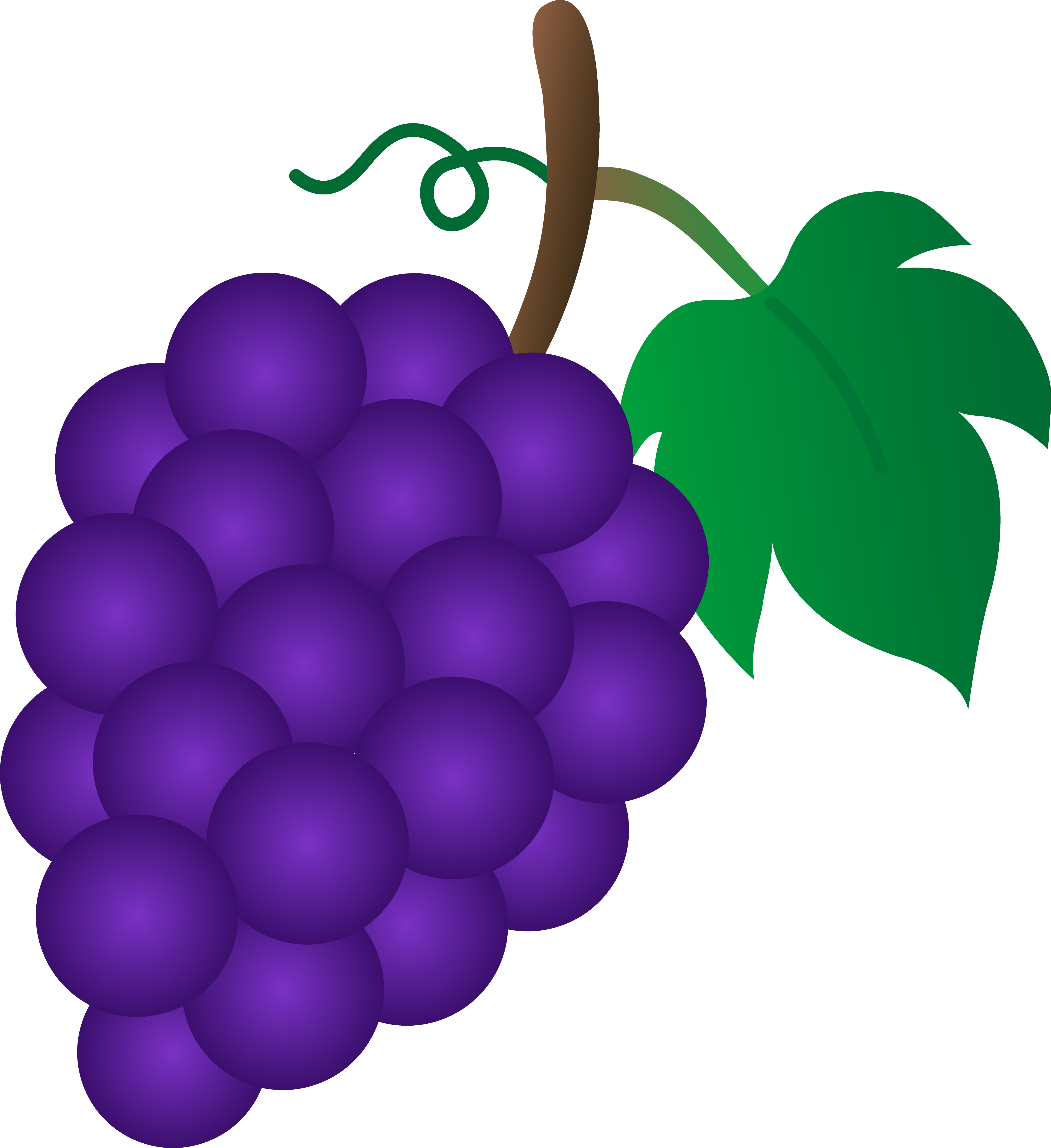 Grape clipart. Cartoon grapes