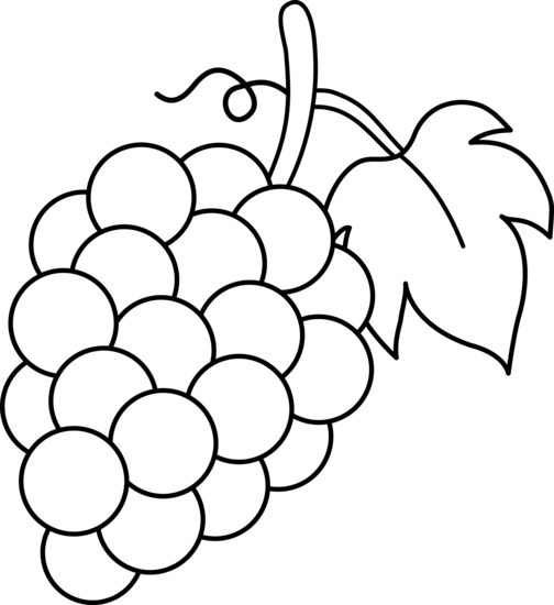 Grape clipart drawing. Free grapes download clip