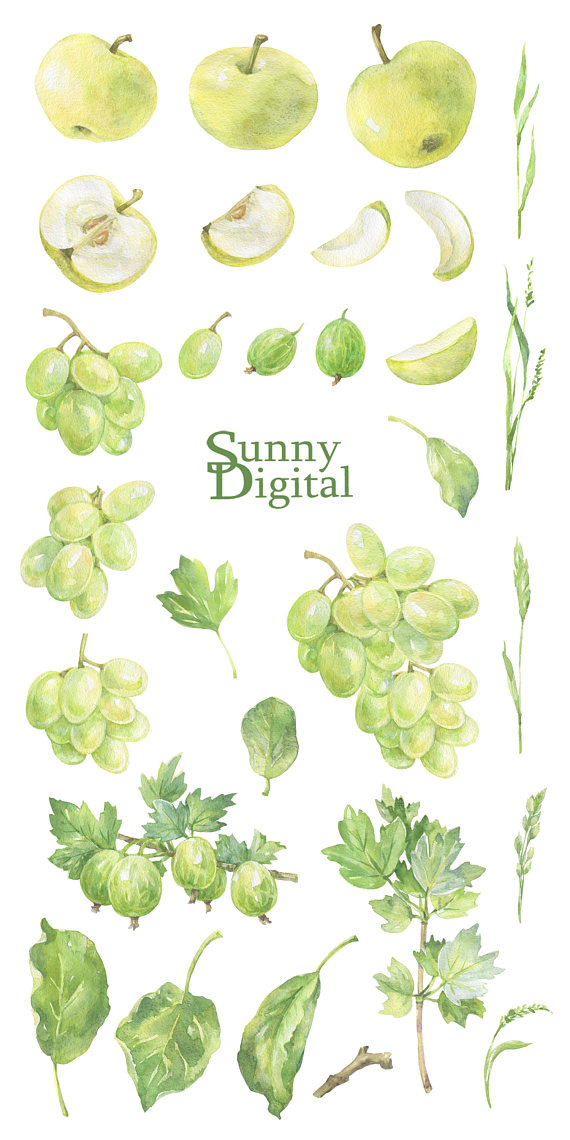 Grape clipart green item. Check out this in