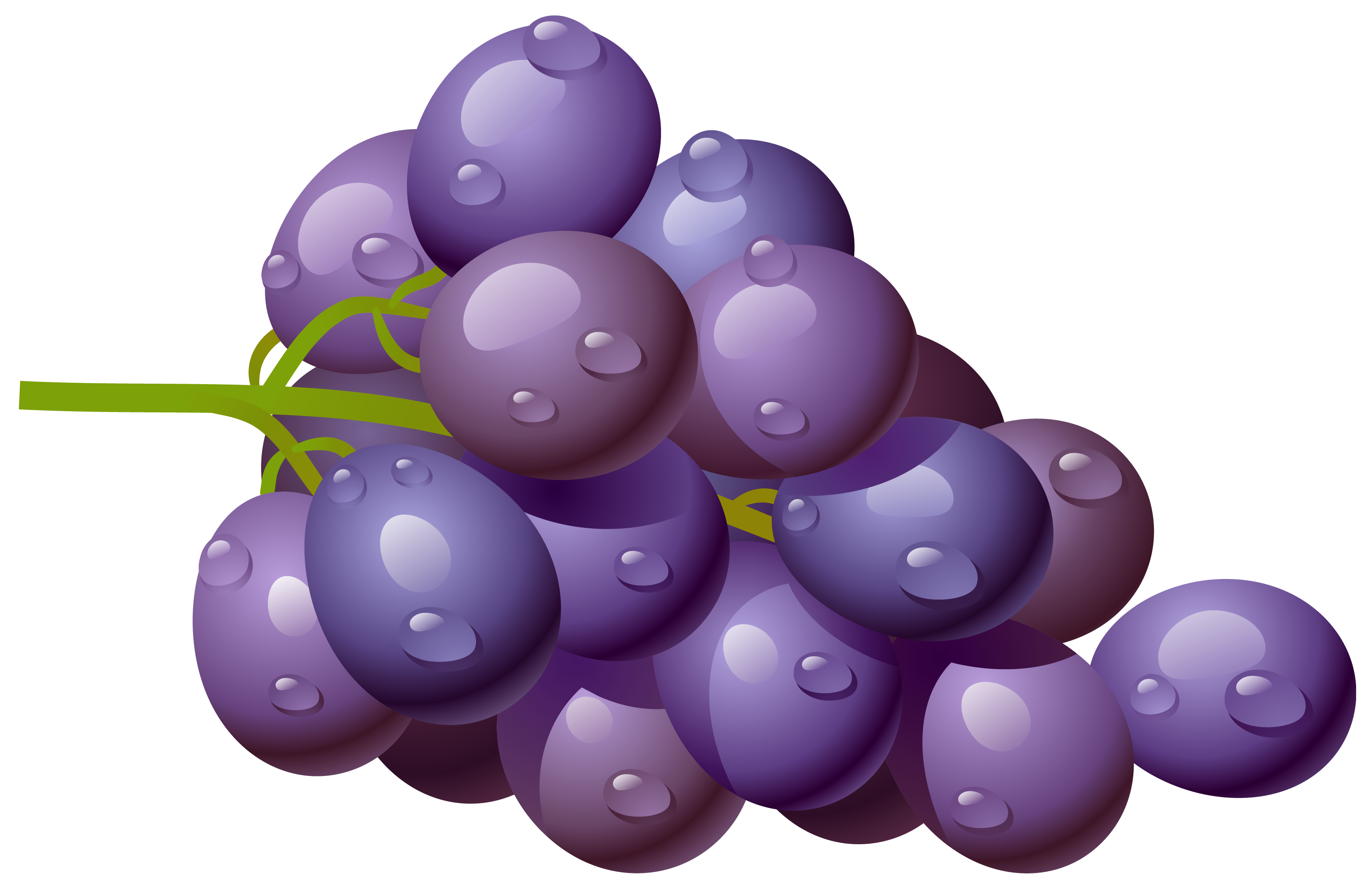Grape transparent high quality. Png clipart picture gallery