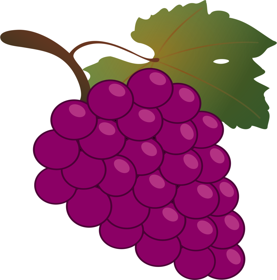 Grape clipart illustration. Grapes free stock photo