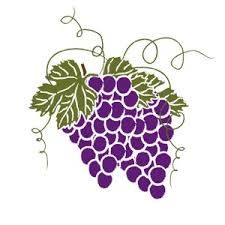 Grape clipart illustration. Vine clip art free