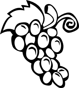 Grapevine vector outline. Grapes clip art at