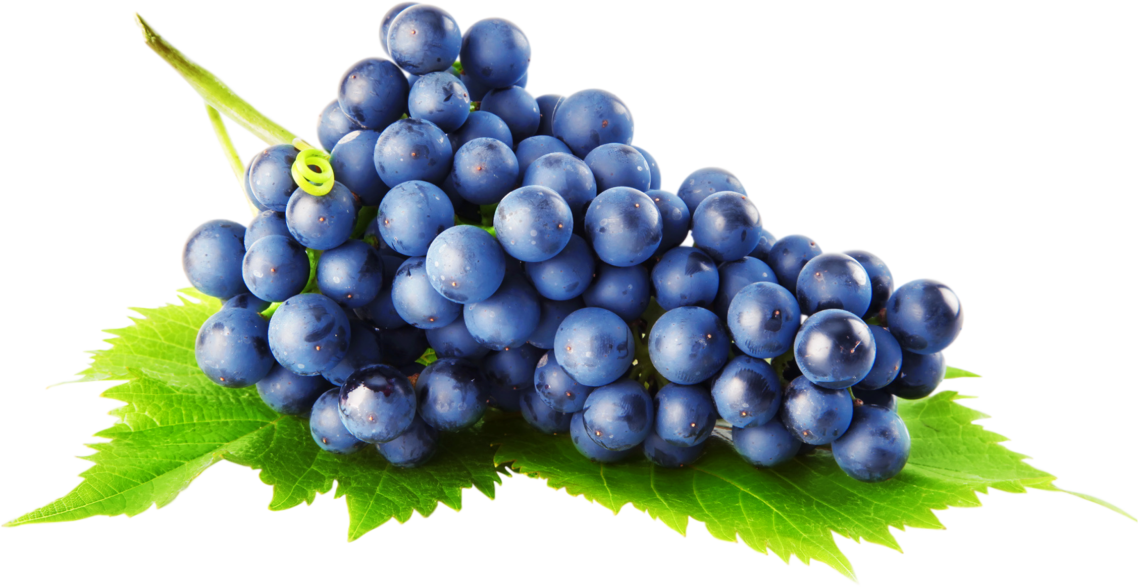 Grape png. Image free picture download