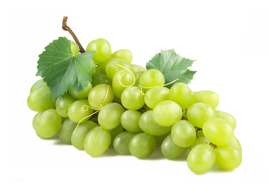 Grape png all. Transparent grapes high quality banner freeuse download