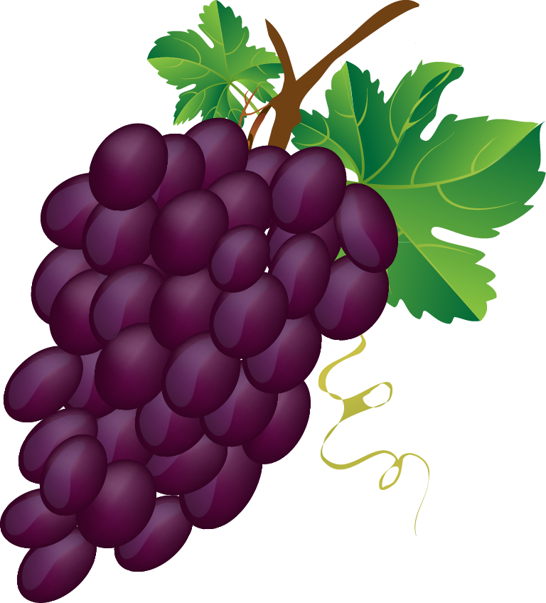 Grape transparent animated. Collection of clipart