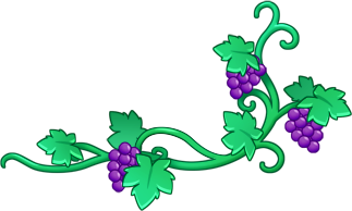 Image vine bronies wiki. Grape vines png picture black and white library