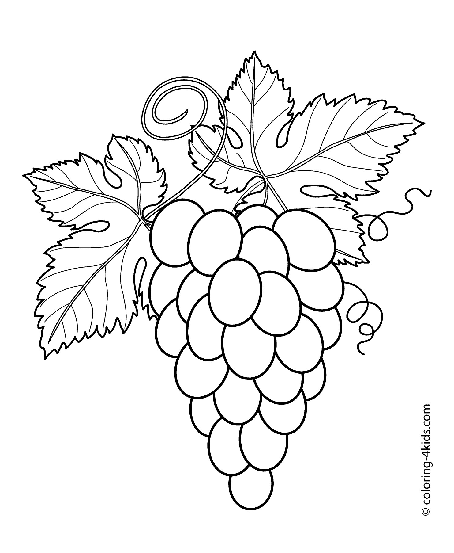 Grapes clipart coloring sheet. Page illustration of grape