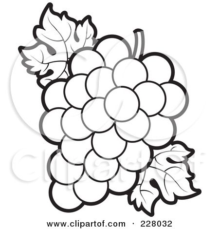 Grapes clipart coloring sheet. Flower outlines for page