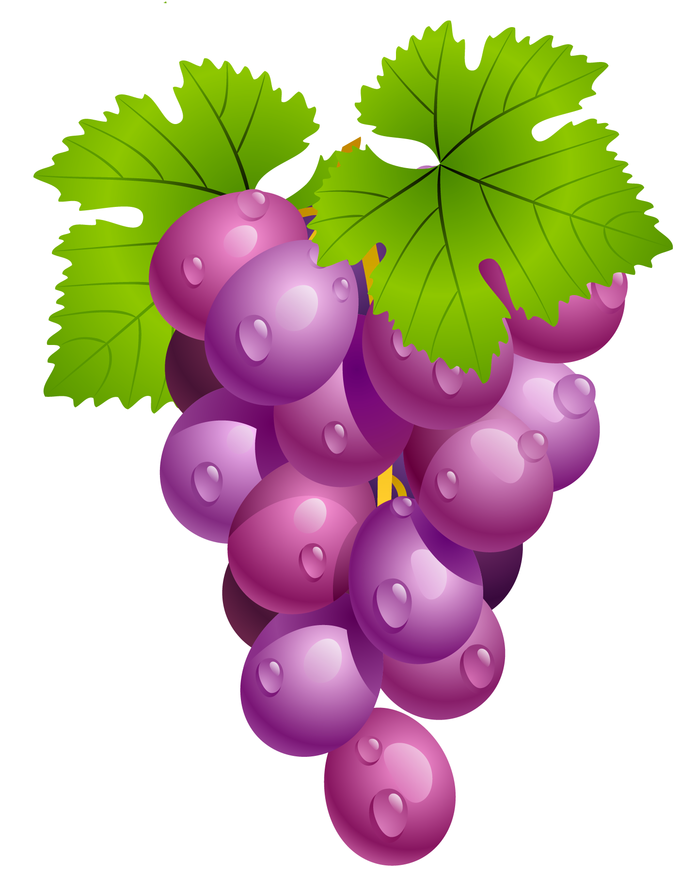 Berry vector bunch. Grapes with leaves png