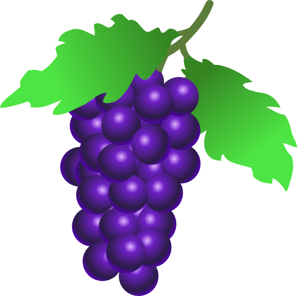 Grapes clipart purple grape. Pin by hopeless on