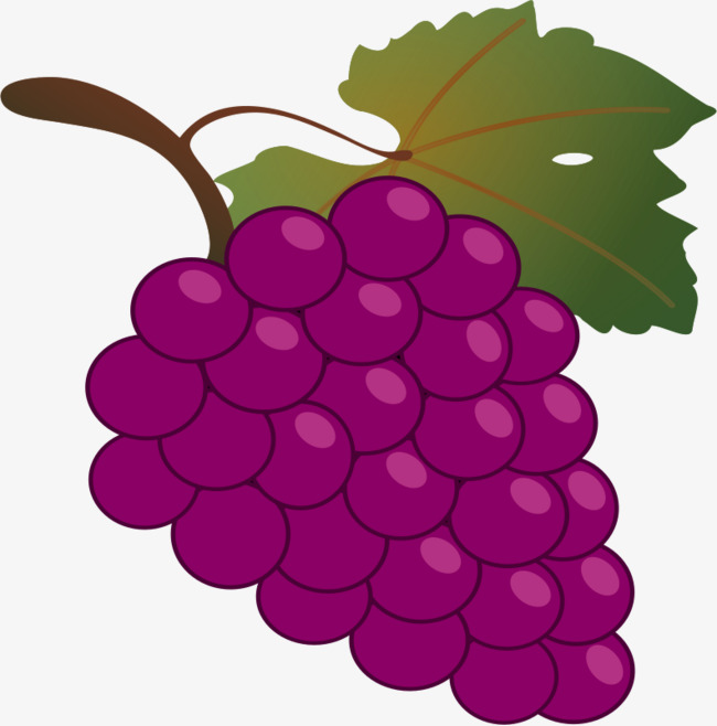 Grapes clipart purple grape. Cartoon with leaves png