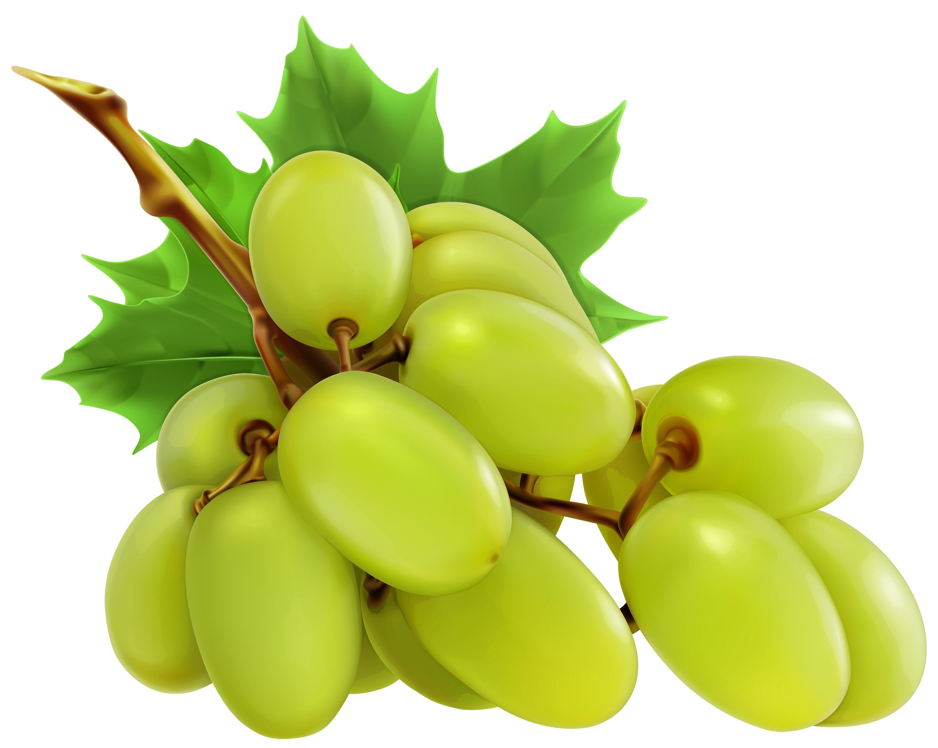 Transparent grapes white