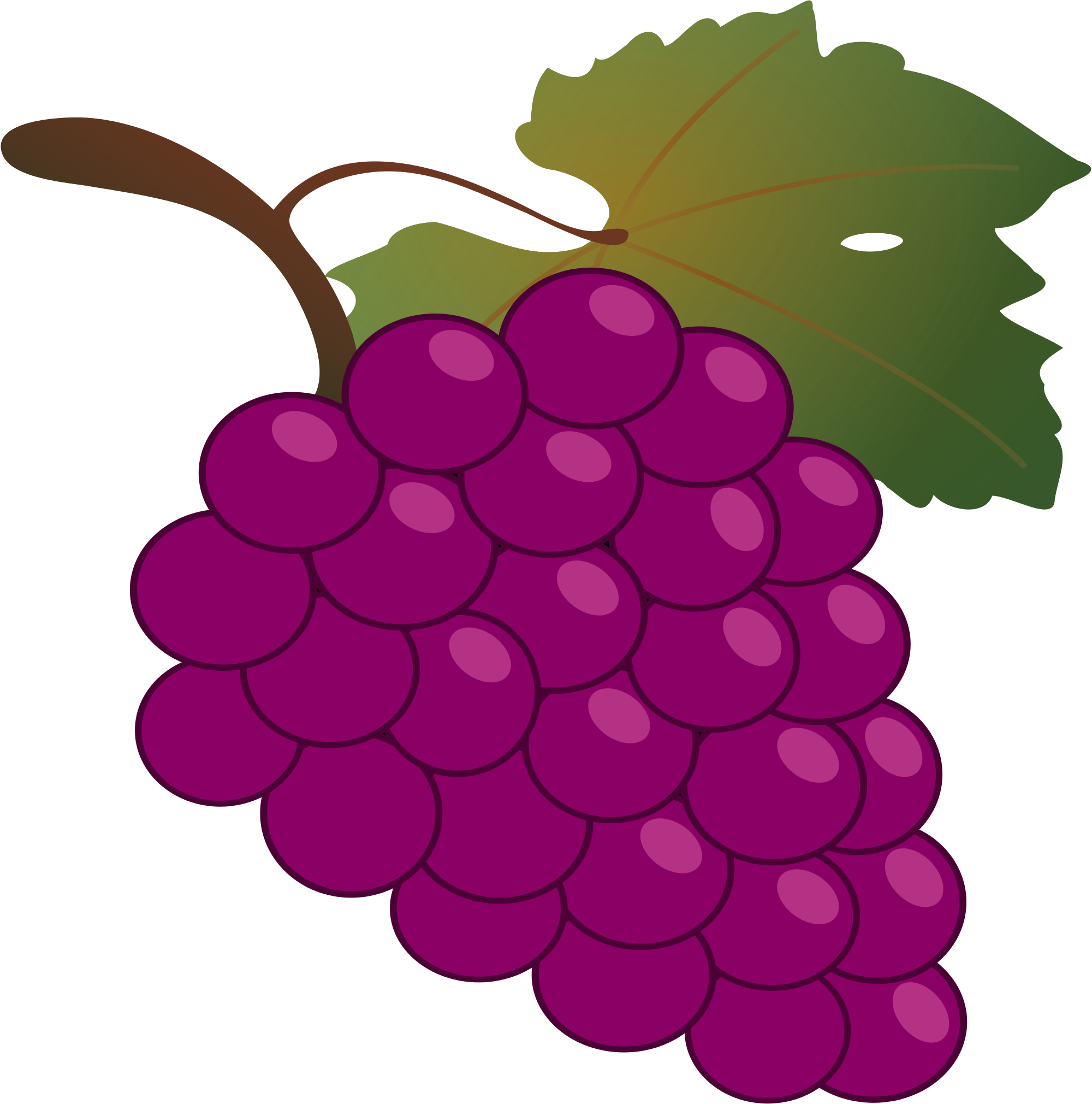 grape transparent svg
