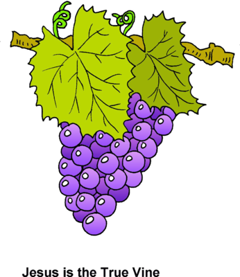 Vines svg grape. Collection of free branches