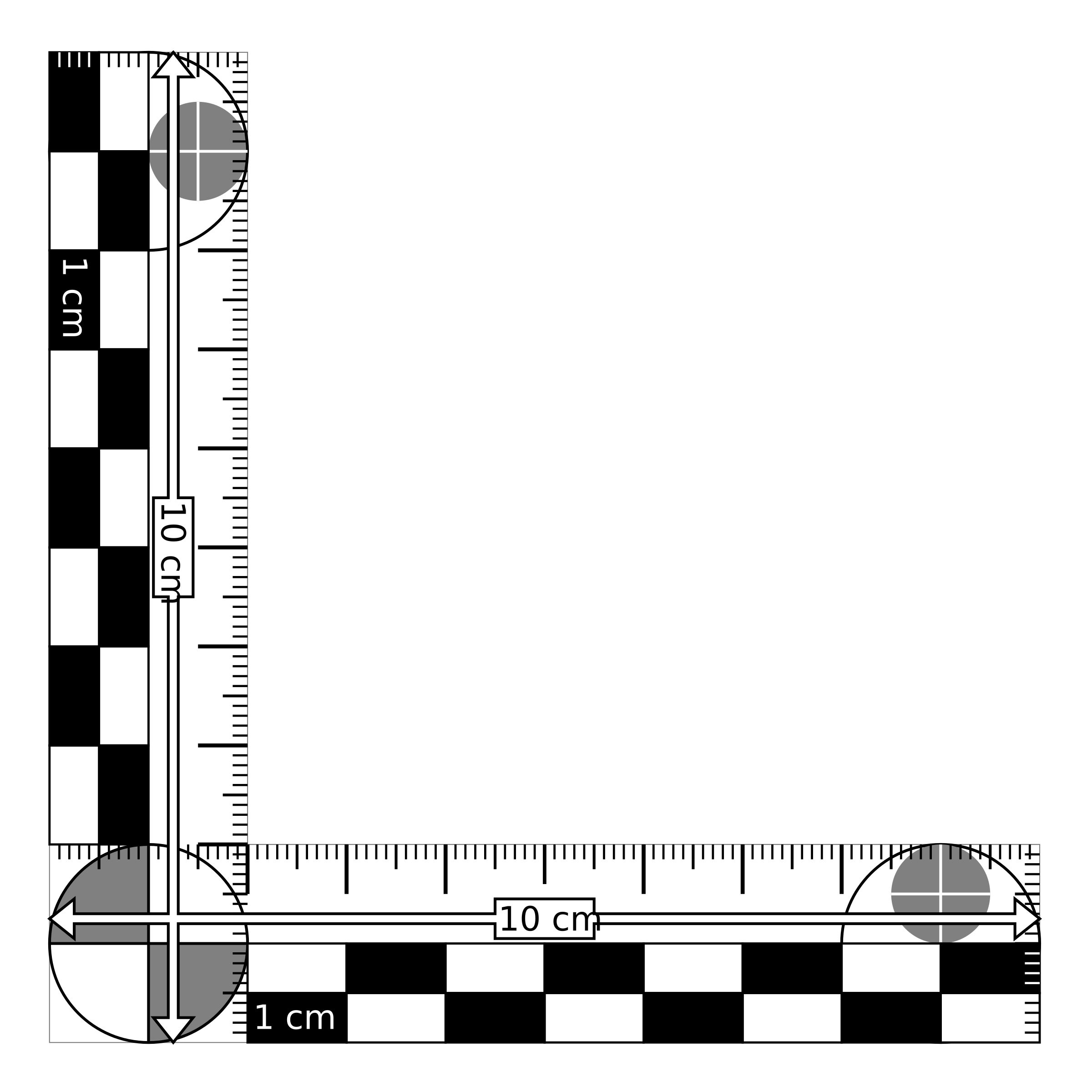 Graphic scale png. Clipart photomacrographic x cm