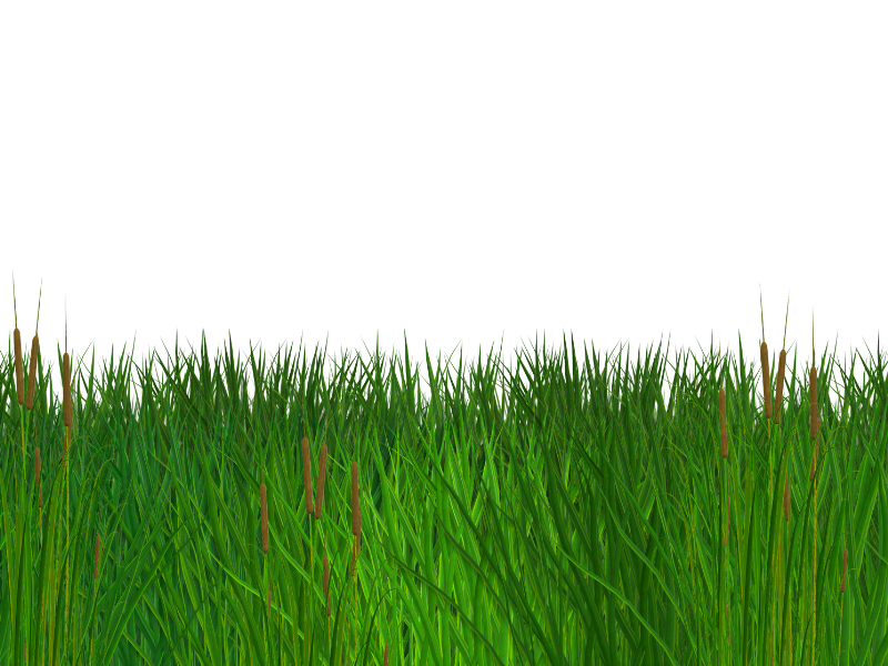 Grass border png. Seamless free clipart nature