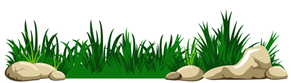 Grass cartoon png. Gallery grounds coverings clipart