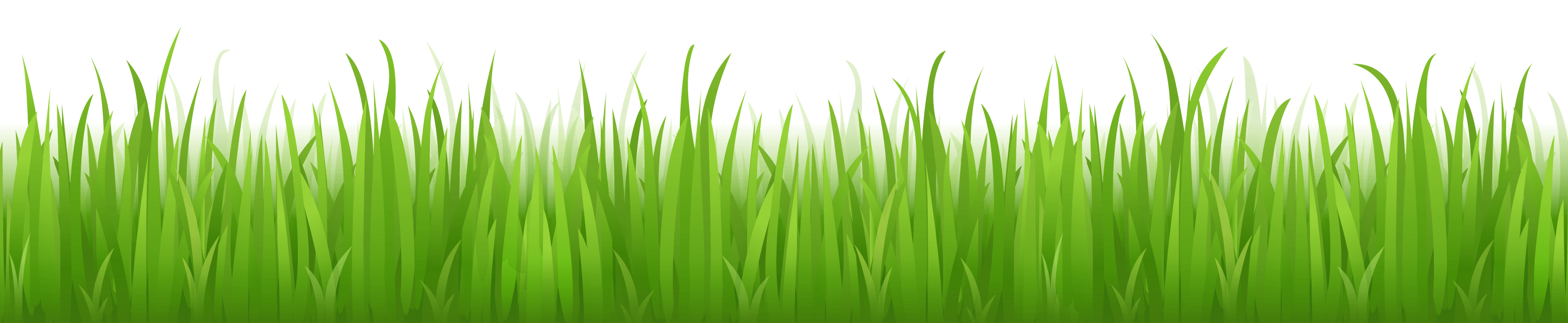 Grass cartoon png. Download image green picture