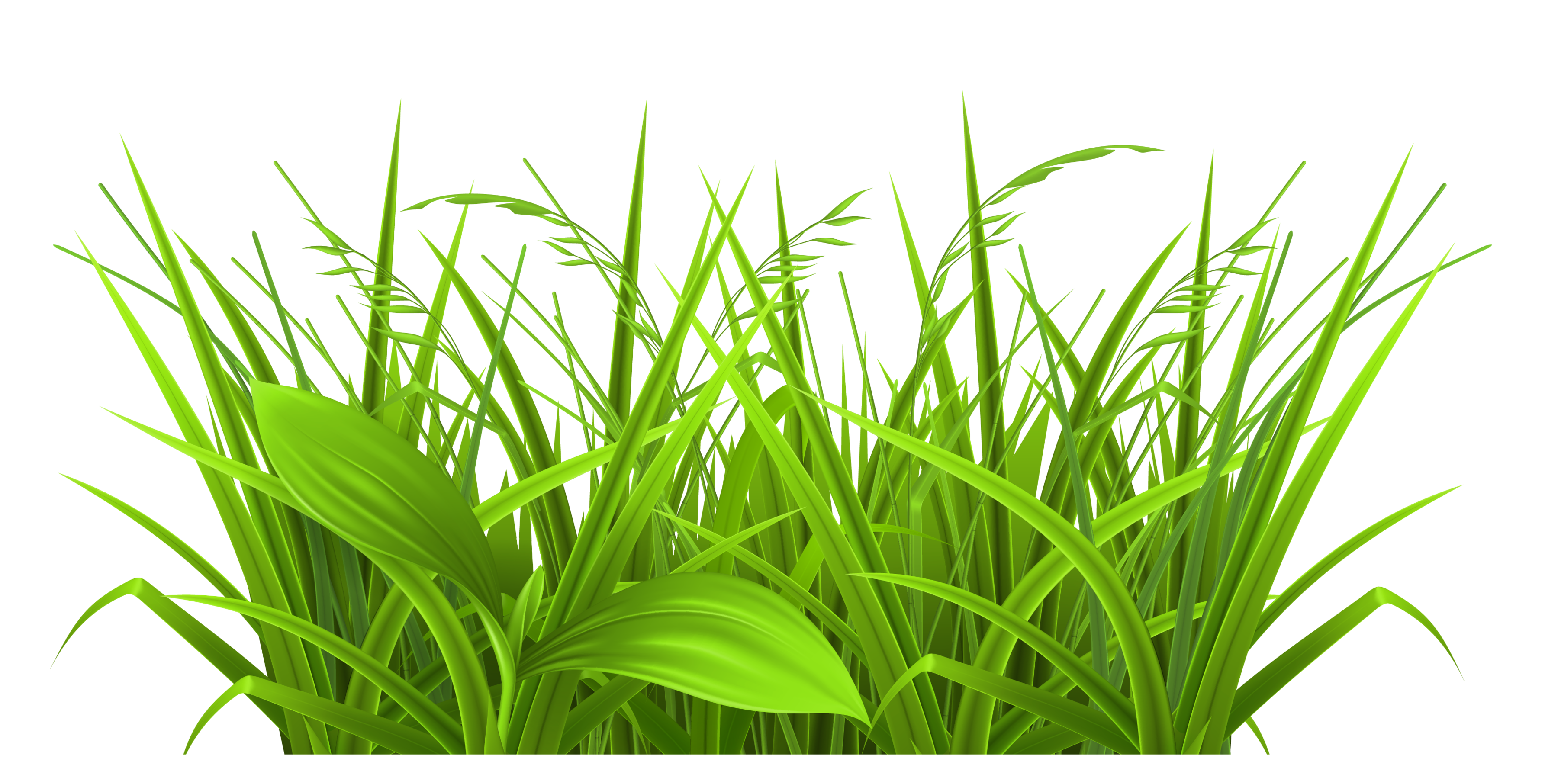 Grass cartoon png. Silhouette free at getdrawings