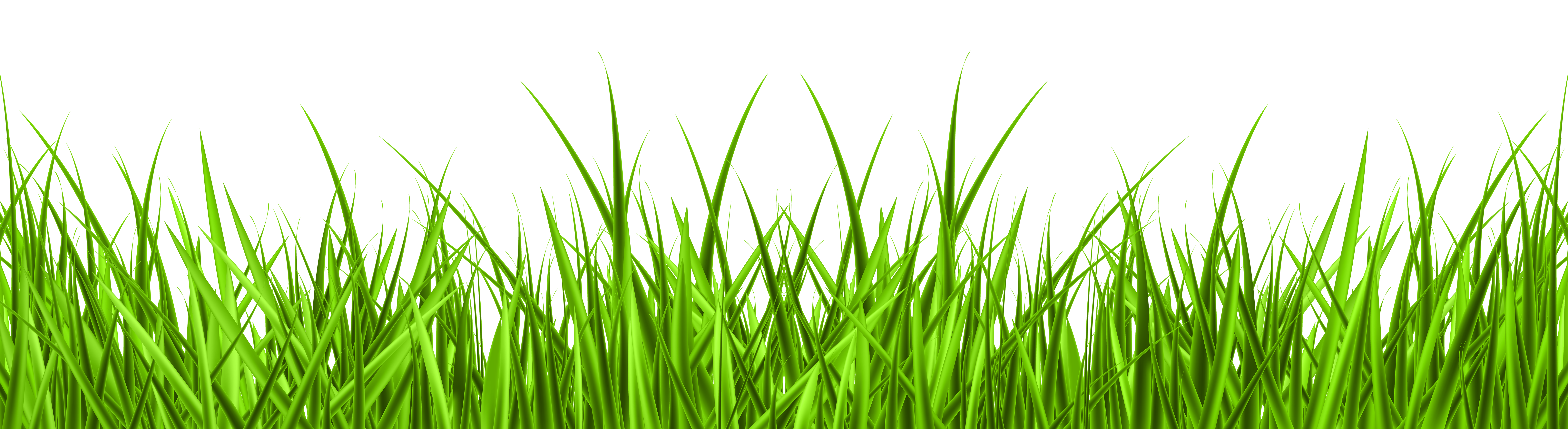 Grass png. Clip art image gallery