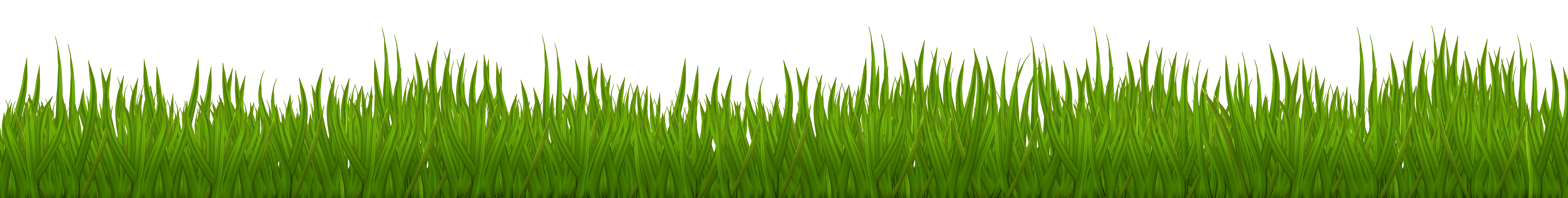 Lawn vector tree grass. Png clip art image