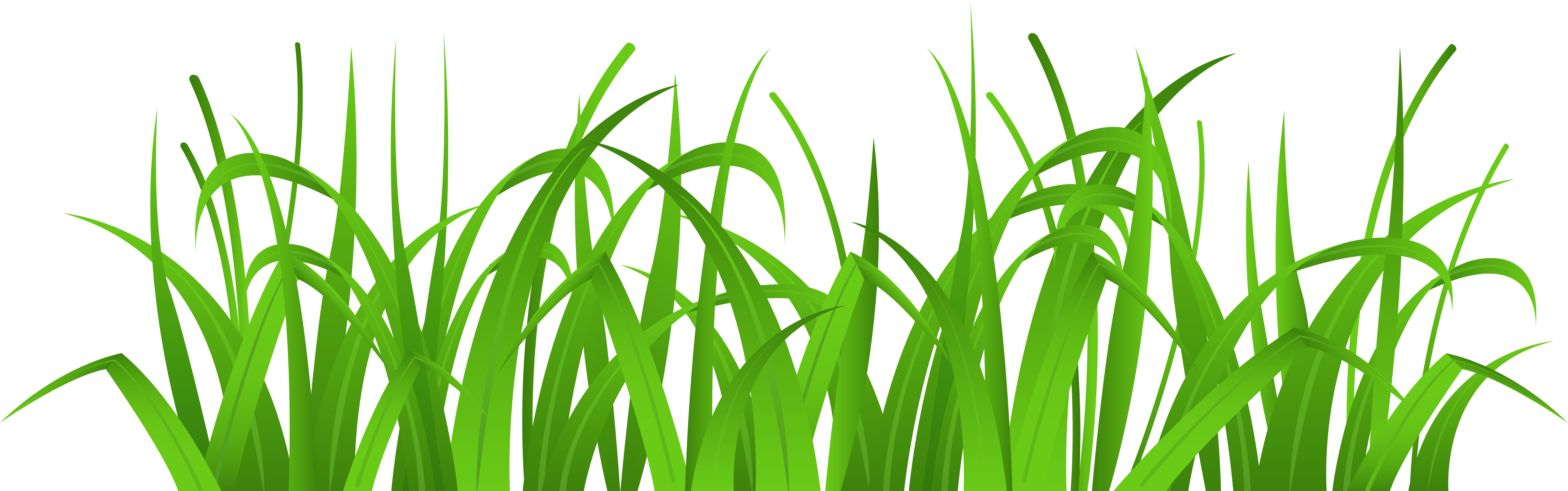 Cover clip art best. Grass clipart png format freeuse download