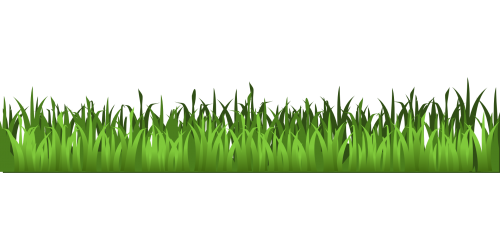 Grass clipart. Meadow green isolated stock