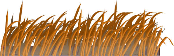 Grass clipart easy. Brown
