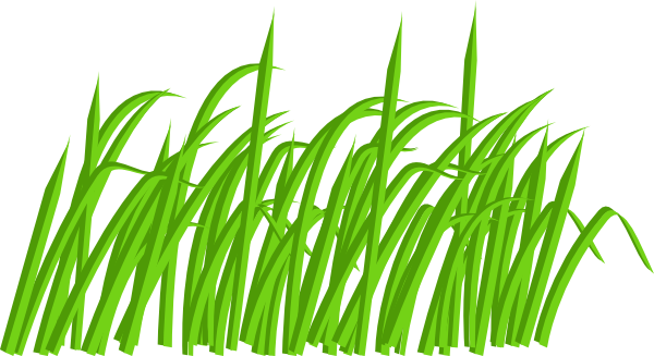 Lawn vector grass african. Green clipart