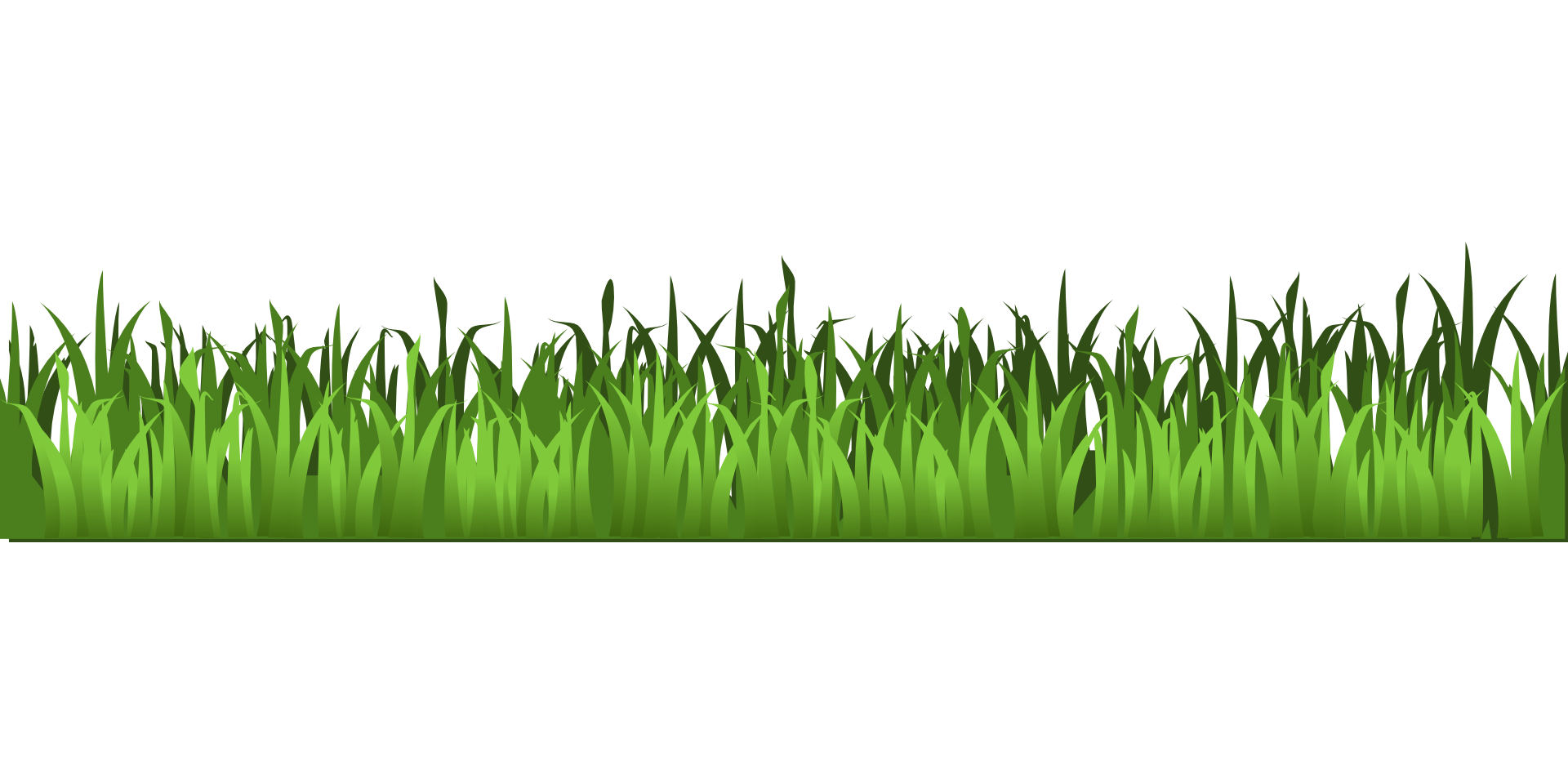 Meadow green grass isolated. Weed clipart vector free download