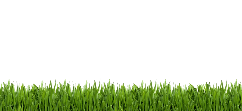 Grass clipart row. Golf png image